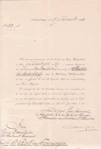 Ridder Militaire Willemsorde 3e Klasse